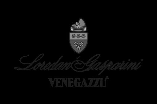 Capo di Stato logo